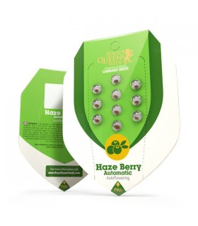 Haze Berry Automatic -...