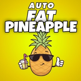 AUTO FAT PINEAPPLE