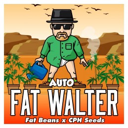 AUTO FAT WALTER - LIMITED...