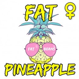 FAT PINEAPPLE