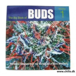 Big book of BUDS 1