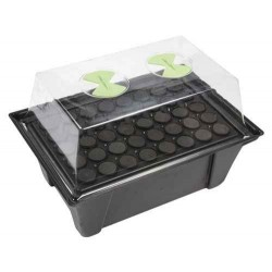 X-Stream, Aeroponic Propagator, heated, for up to 36 seedlings