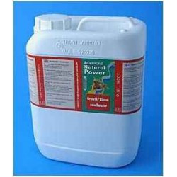 1L Advanced Hydroponics Growth/Bloom Excellerator