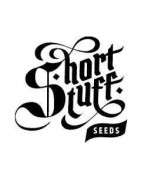 Shortstuff Seeds (Autoflower)
